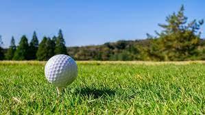 ゴルフの新プレー「ワンオンゴルフ」とは何か   ゴルフとおカネの切っても切れない関係   東洋経済オンライン   経済ニュースの新基準